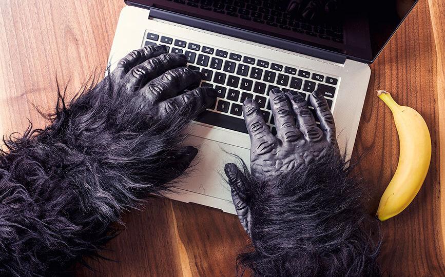 gorila-laptop